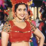 Actress Meena Hot Pictures