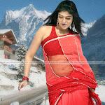 Nayanthara Saree Image Collections