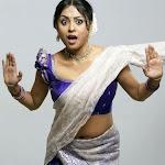 Tamil Actress Meenakshi Hot Neval Show In Saree