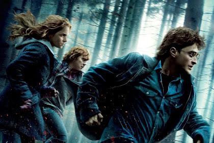 Lo Mejor De Frases Frikis De Amor Harry Potter En Frasesamor