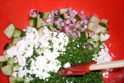 Cucumber Parsley Salad with Feta, perfect with anything grilled or spicy!