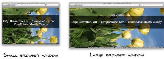 Resizeable Background Image