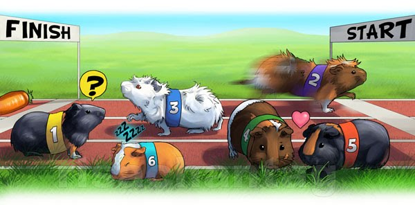 Original: Guinea Pig Race by Risachantag