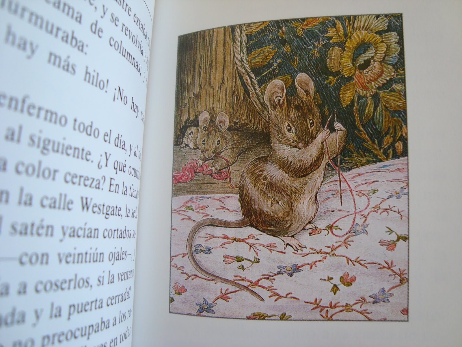 Beatrix Potter Libros A Quien Busque Belleza Y Maravillas Beatrix Potter
