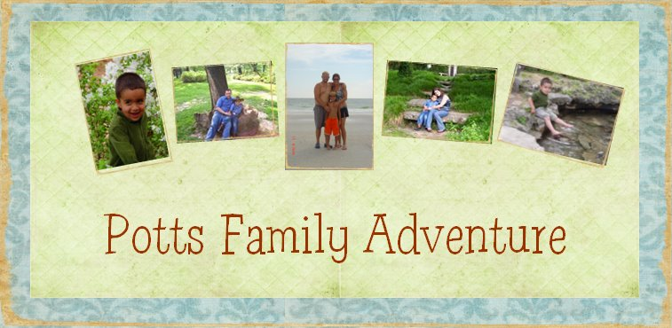 The Potts Family Adventure
