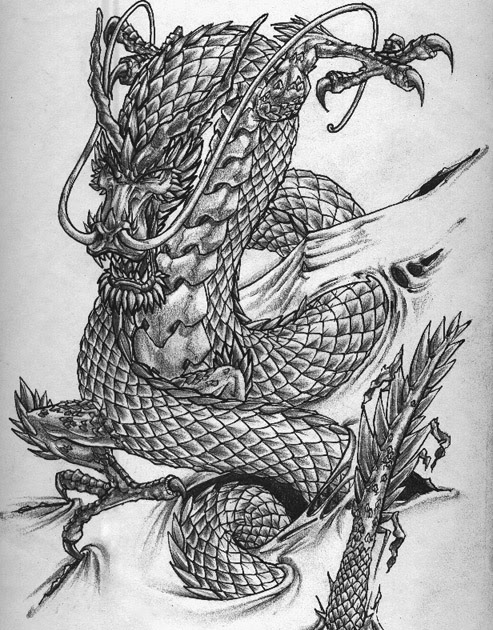 Briefs Of Life Chinese Dragon Tattoo Drawing