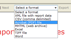 local report in ssrs pdf generation