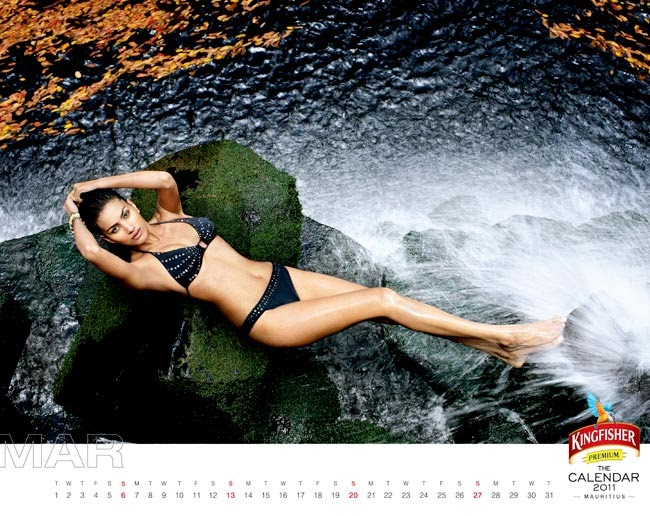 Harper Gallery Kingfisher Calendar