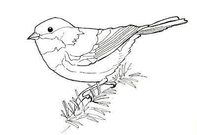 Birdly Drawn: Chestnut-backed Chickadee: Line Drawing