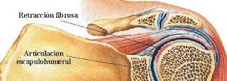 Consultorio de Kinesiología. Masajes, acupuntura..