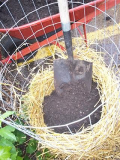Rellenar de compost y paja