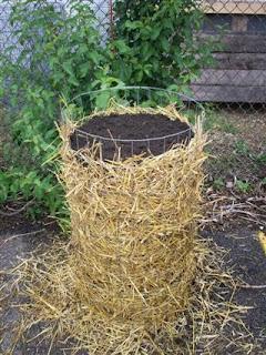 A potato tower.