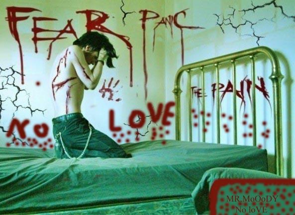 leesa s story no love no pain