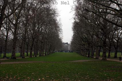 Buckingham Palace, palacio londres, londres, casa da rainha