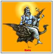 My Jyotish Kendra