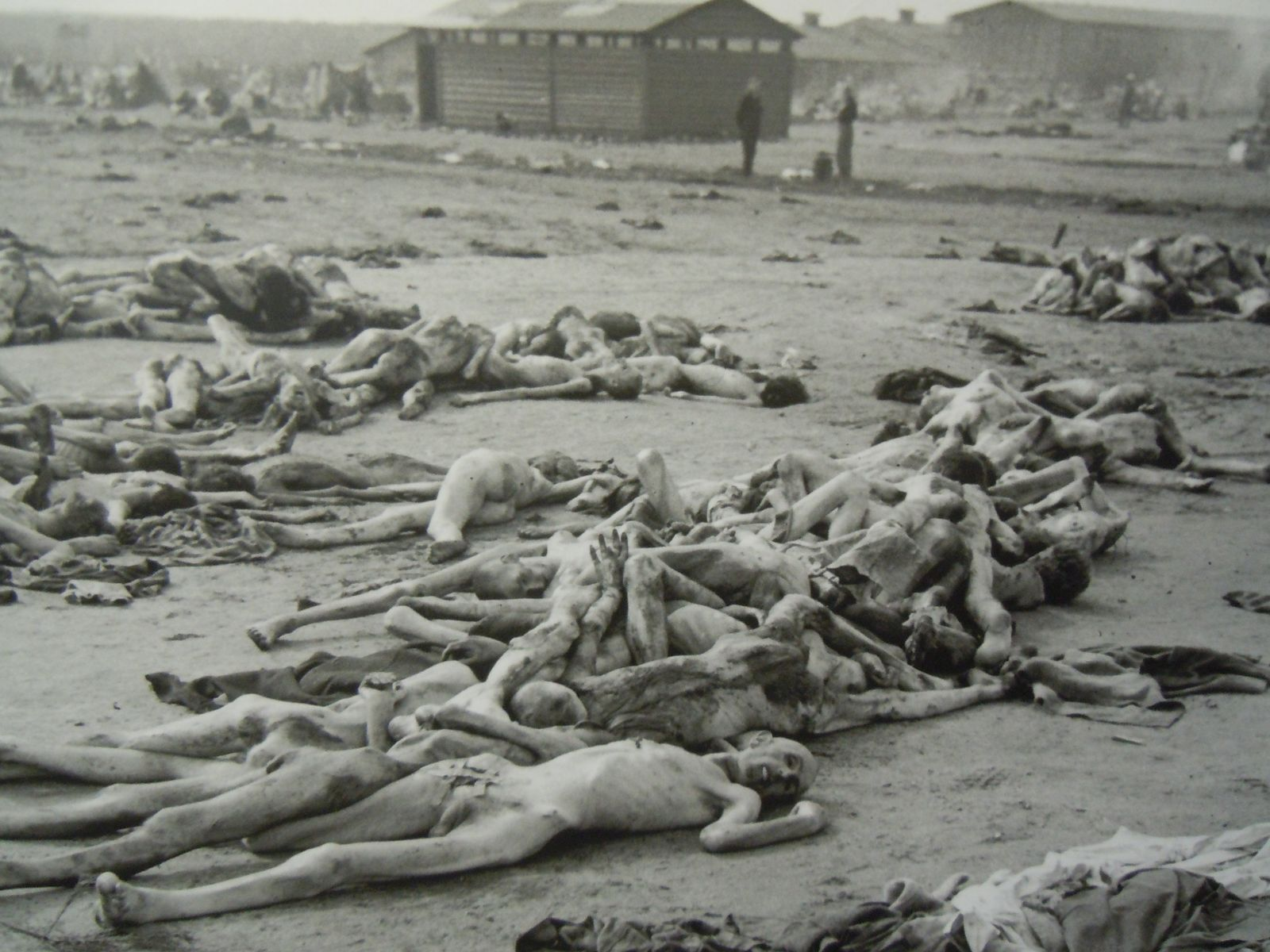 Auschwitz camps 1 2 3 myideasbedroom com