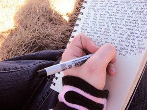 catatan harian