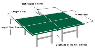 1e2 science project march 2010 - Measurements of table tennis table ...
