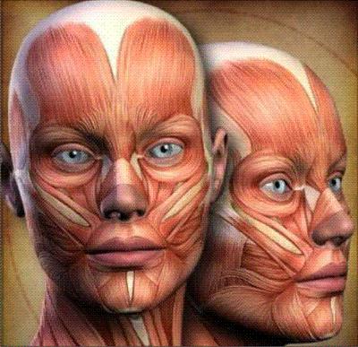 Avaliação clínica da Paralisia Facial