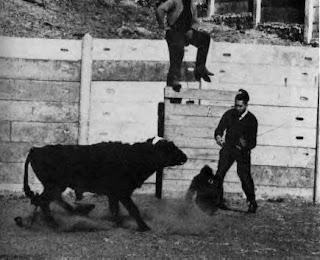 El Toro furioso
