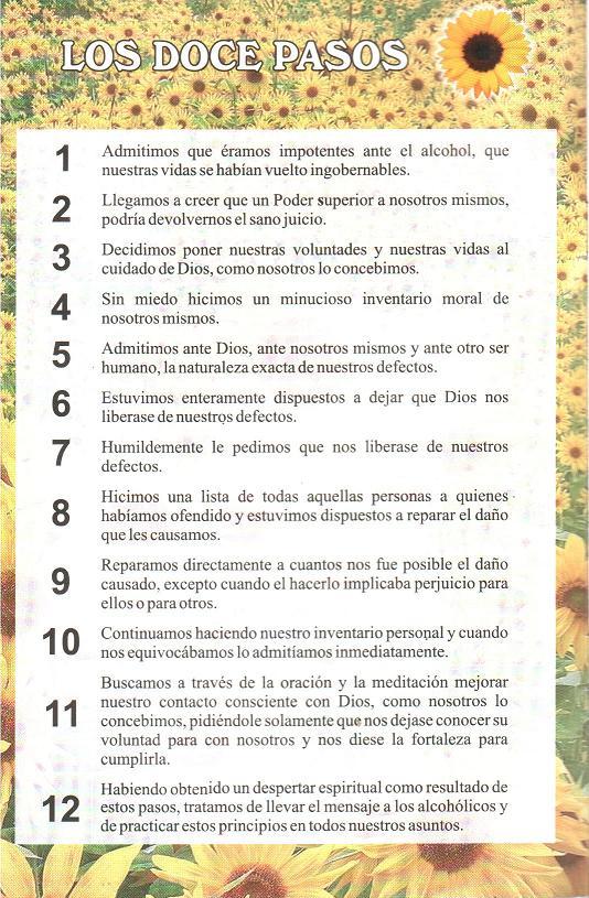 Los 12 Pasos De Alcoholicos Anonimos Pdf