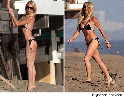nicollette sheridan weight