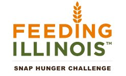 Illinois Food Stamp Income Guidelines