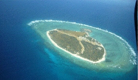 image of Lady Elliot Island where Peter continued his journey From Adult Non-Swimmer To Swimmer