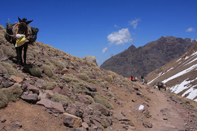 TOUBKAL - MARROCOS | Subir ao cume do norte de África
