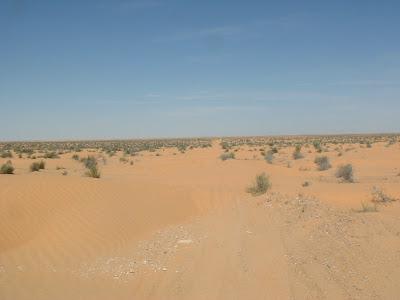 sable dans les roulement direction vtt