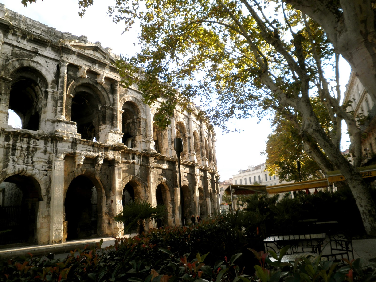 Fly Nimes A Semester In Provence