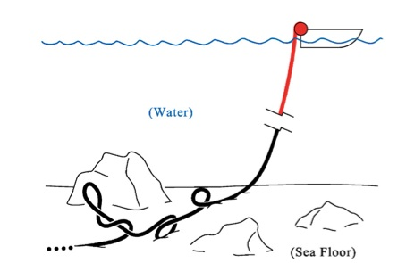 eScienceCommons: Undersea cables add twist to DNA research
