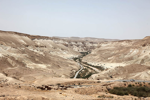 ישראל בתמונות - נחל צין, מבט משדה בוקר