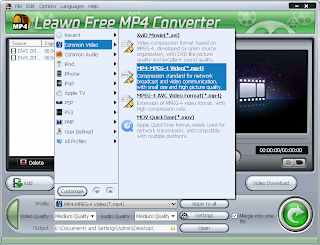 Free MP4 Converter Video Output Options