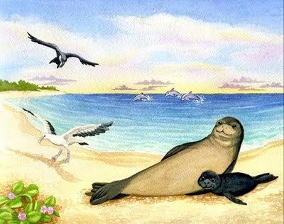 Origami n' Stuff 4 Kids: Fun Facts: Hawaiian Monk Seal - photo#50