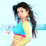 Ayesha Takia   Celebrity Photos