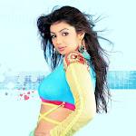 Ayesha Takia   Celebrity Photos