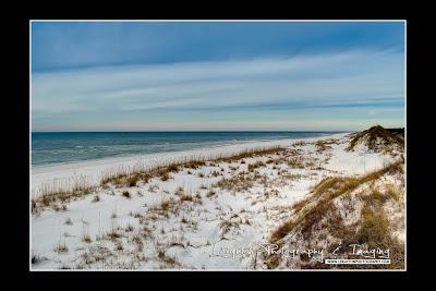 St. Joseph Peninsula Dunes