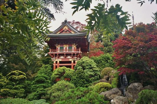 Golden Gate Park/The Japanese Tea Garden