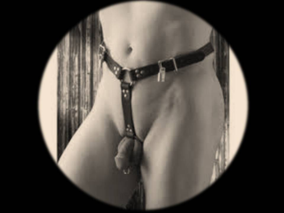 Best female butt plug-4735