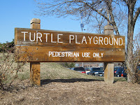 Turtle Playground Sign
