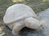 small cement turle