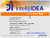 doma: Mac OS X: Using IntelliJ IDEA on 64bit JDK6