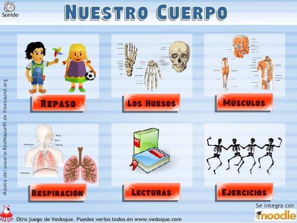 """Cuidado Del Cuerpo Humano: Rincones De Colores: Proyecto : """"El Cuerpo Humano"""""""