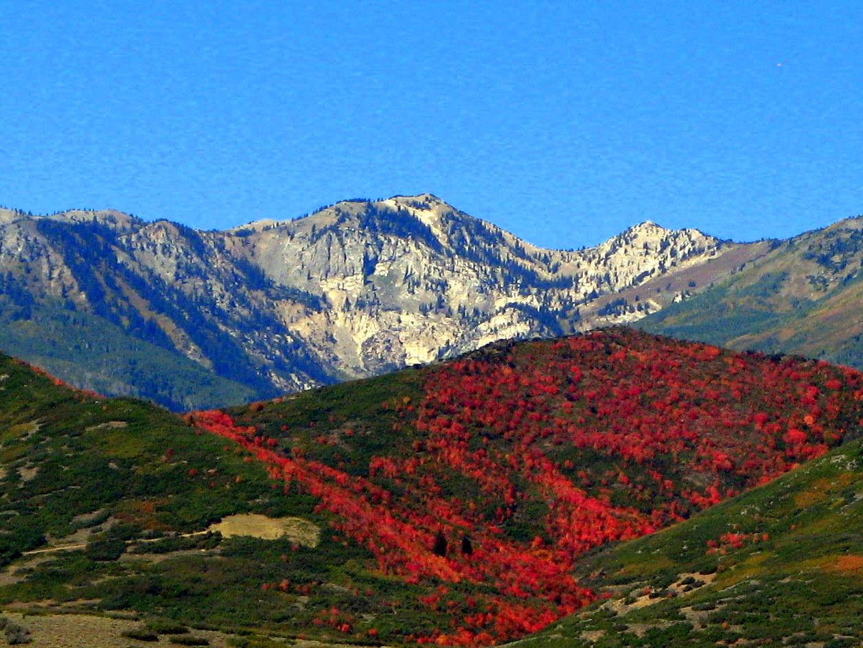 The Summit Reno >> Mary's Ramblin's: SCENIC BYWAY, VERNAL,UTAH TO WEDNOVER, NEVADA