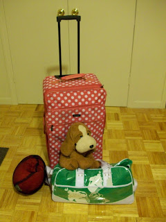 polka dot pink suitcase