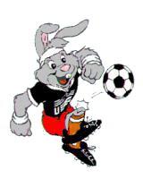 Berni Euro 1988 mascot