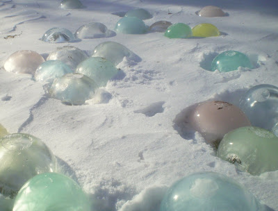 plants are the strangest people lawn ornaments frozen water balloons
