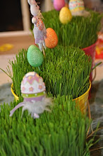 Real Easter Grass Instructions
