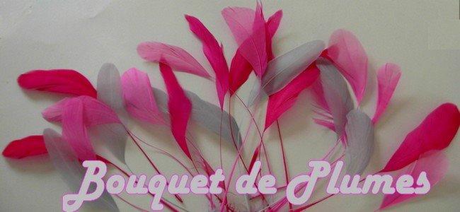 prix imbattable vente chaude authentique large éventail Bouquet de Plumes